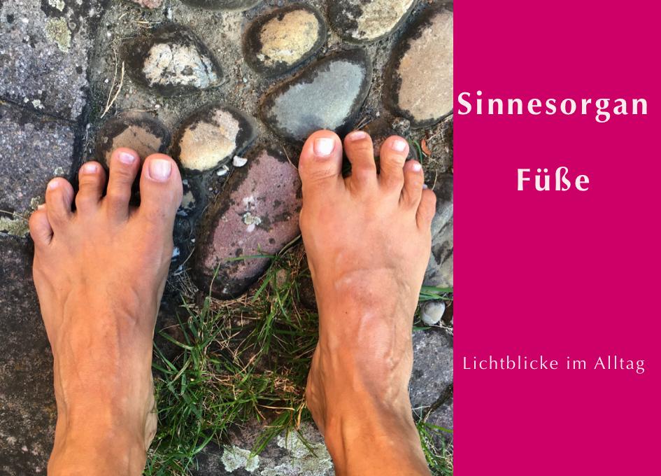 Beitragsbild zum Video Achtsamkeit - Sinnesorgan Füße